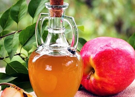 דיאטה תפוחי אדמה ותפוחים