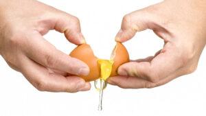 כמה קלוריות יש בביצה
